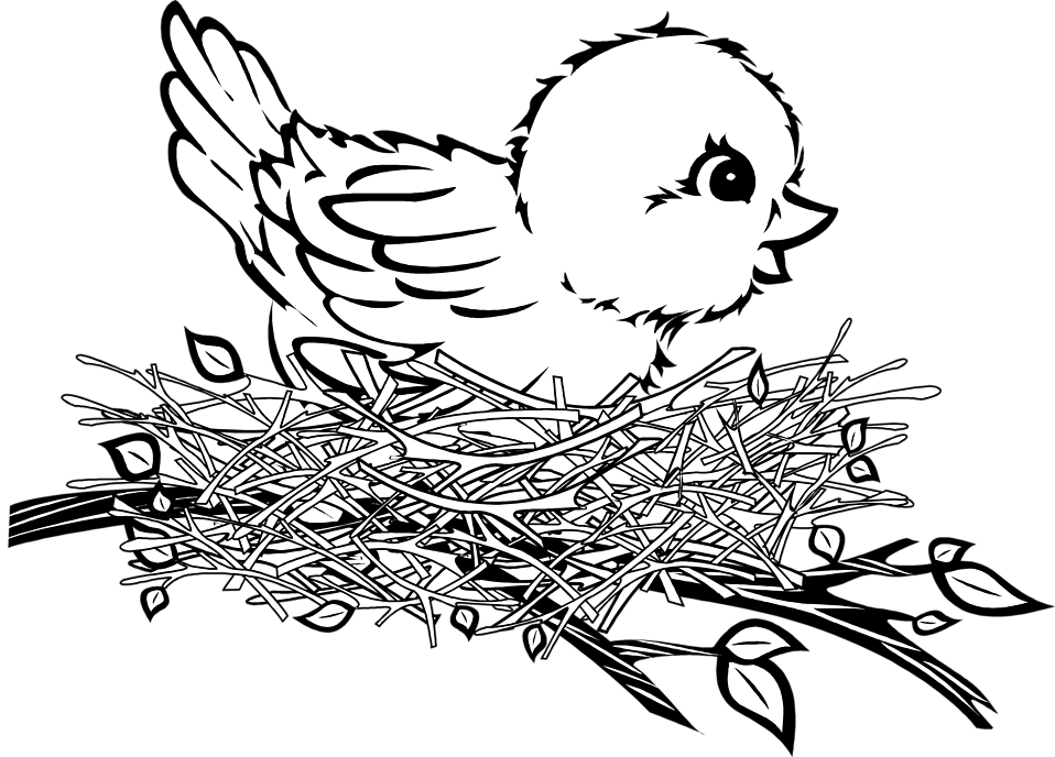 clipart royalty free download bird nest clipart black and white #58108949