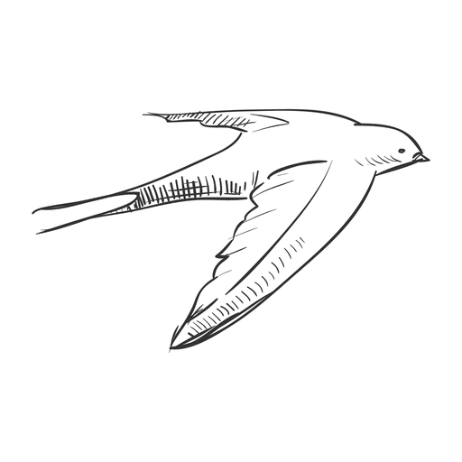 png library Hand drawn flying swallow