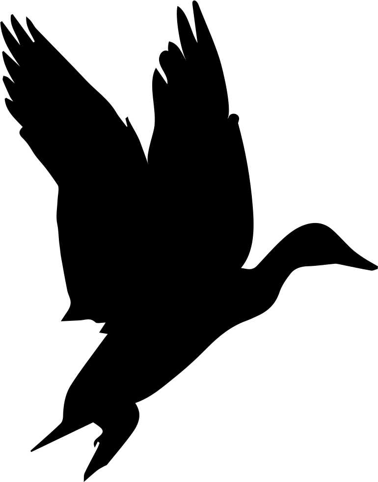 vector black and white download Typography drawing bird. Waterfowl shape svg png