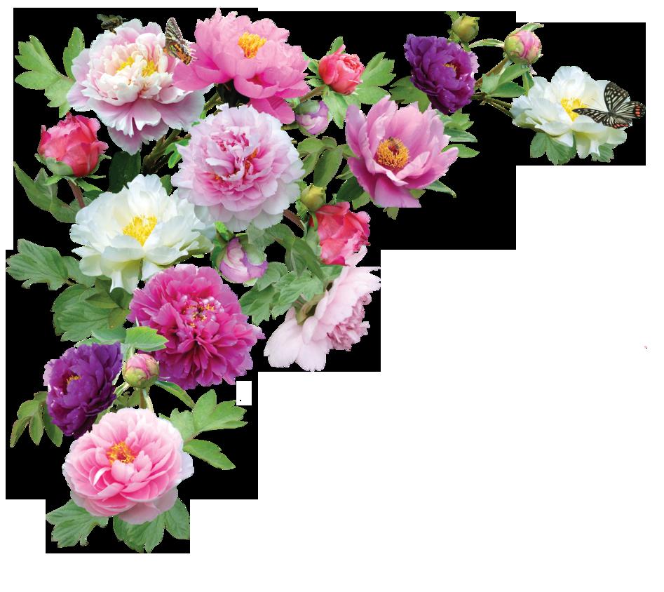 svg transparent download Png clipart free icons. Bouquet transparent 10 flower