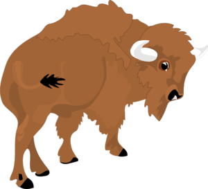 clipart royalty free library Clip art at clker. Bison clipart.