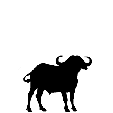 clip royalty free download Buffalo Head Silhouette at GetDrawings