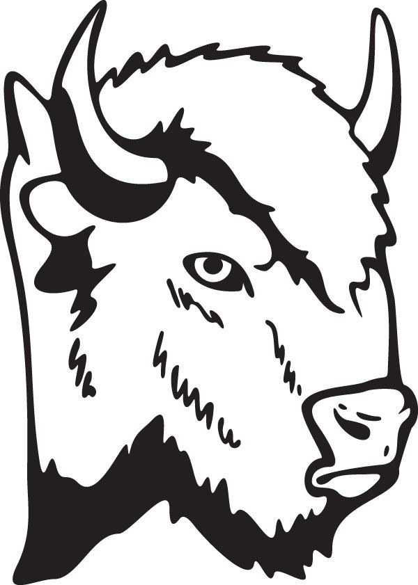 jpg freeuse Buffalo head animal clip. Bison clipart sketches.
