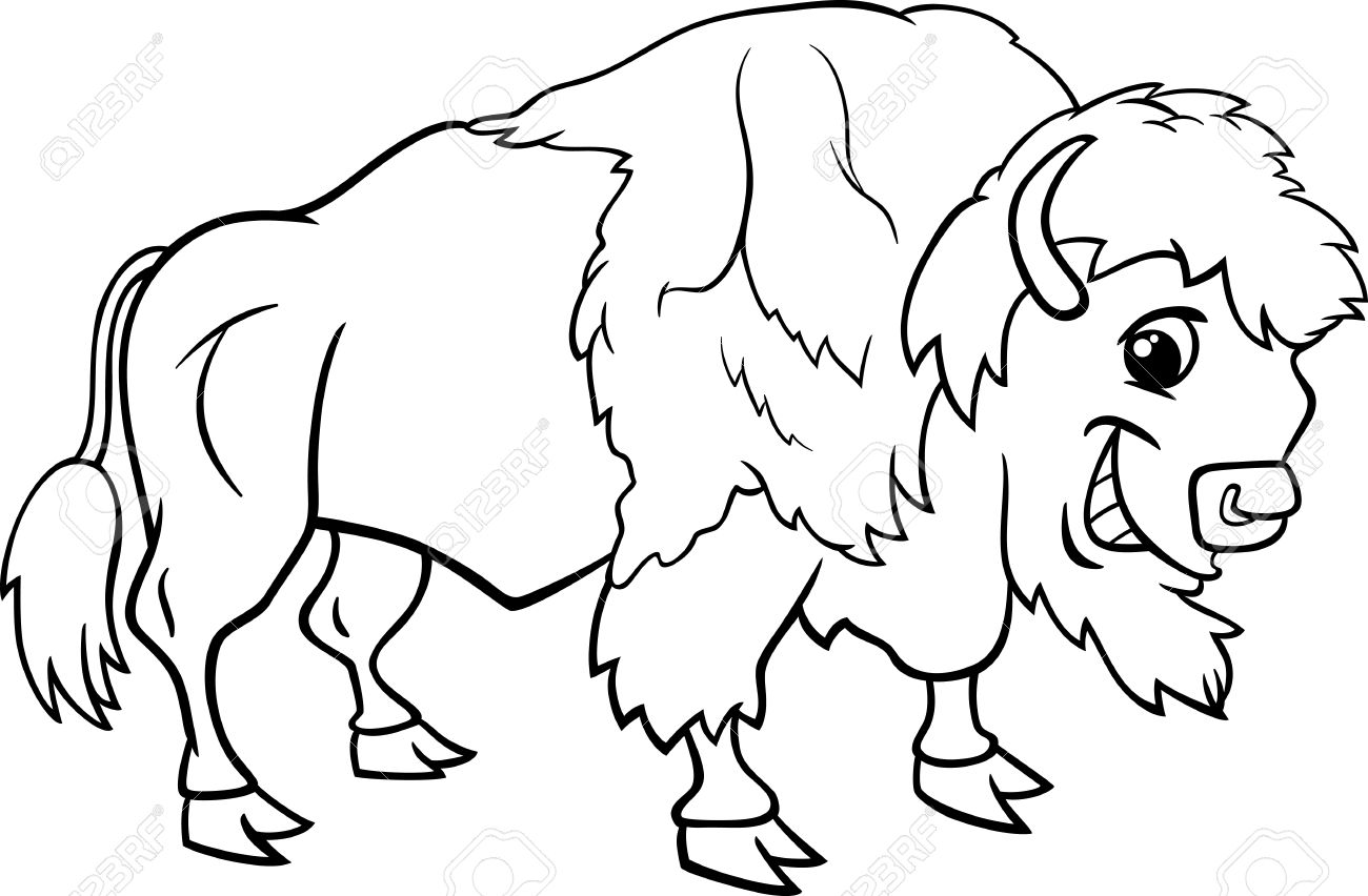 clip royalty free stock Bison clipart sketches. Transparent free for .
