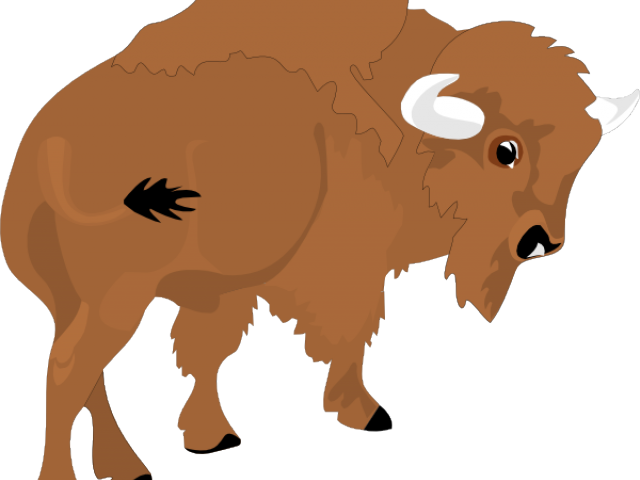 vector library stock Water buffalo free on. Bison clipart sketches.
