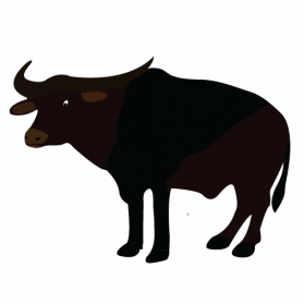 vector royalty free library Png images transparent free. Buffalo clipart illustration