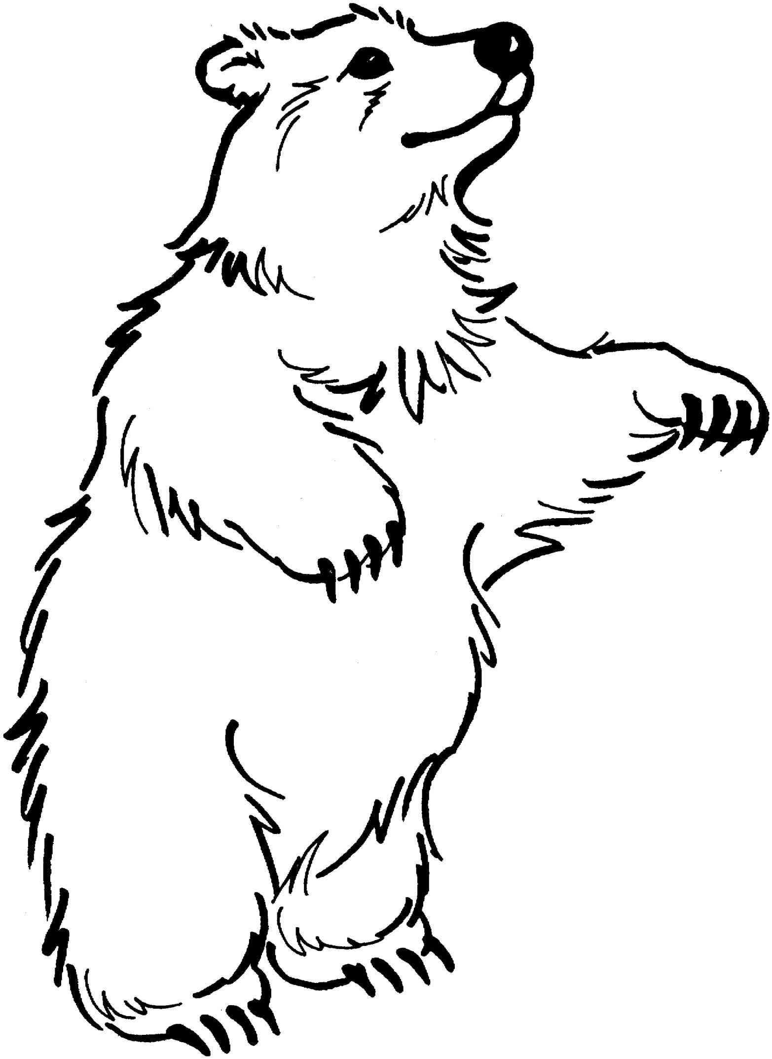 vector transparent Black and white clipart bear. Bears