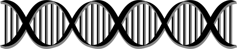 clip transparent stock Black and white dna clipart. Helix medium image png