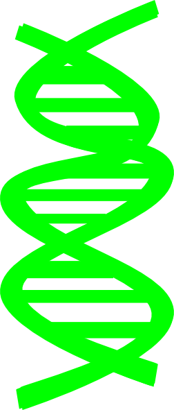 vector freeuse stock Black and white dna clipart. Clip art at clker