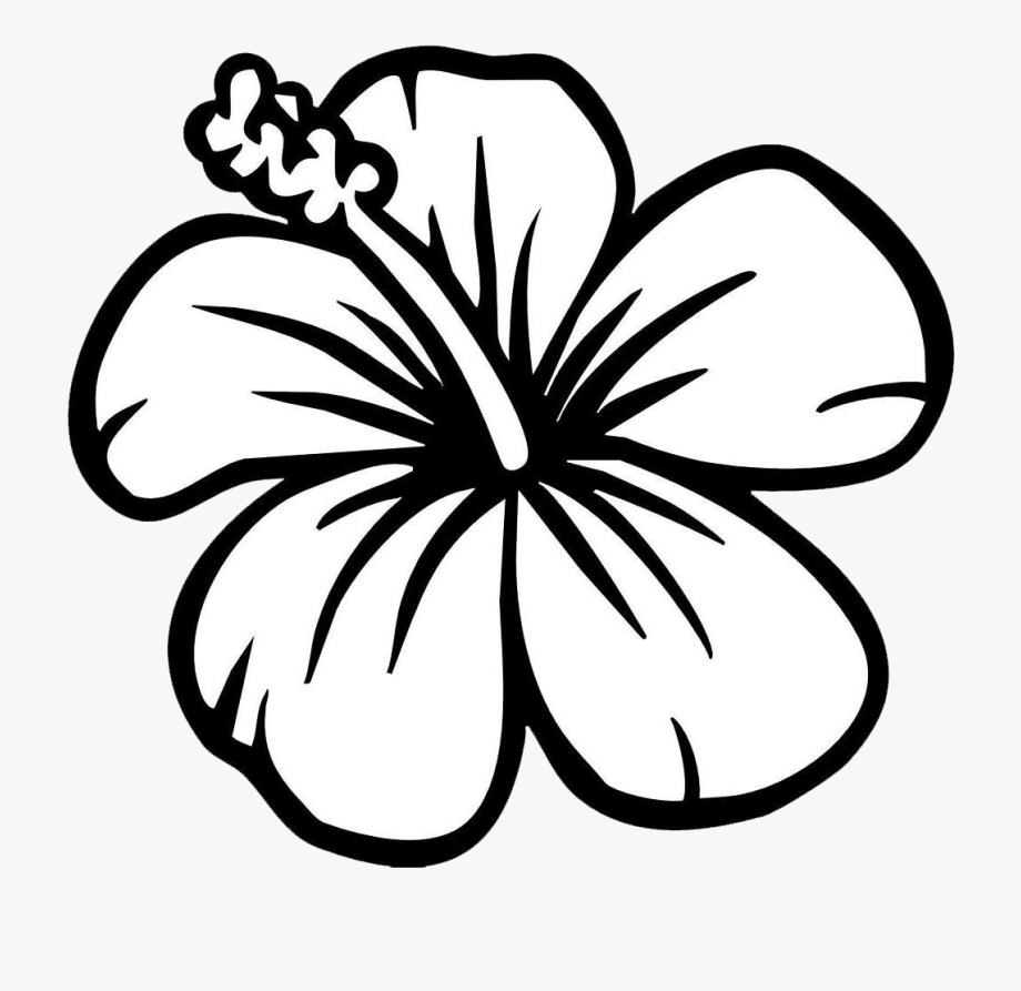 svg library download Hawaii clipart black and white. Beautiful flower free