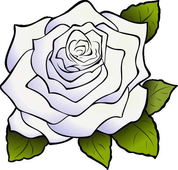 clip art free stock White Rose Clip Art at Clker