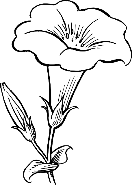 clip art freeuse stock Black outline white flowers. Trucks drawing flower.