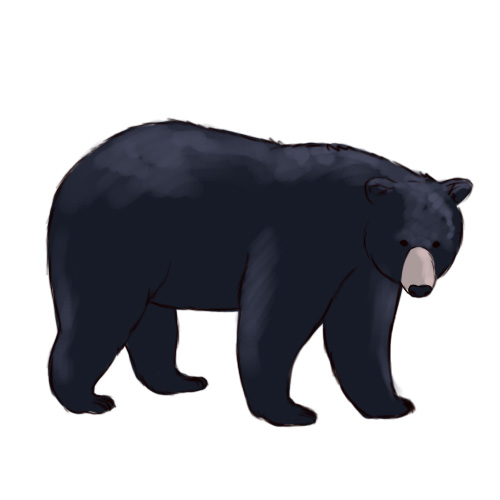 clipart freeuse download Free images download clip. Black bear clipart