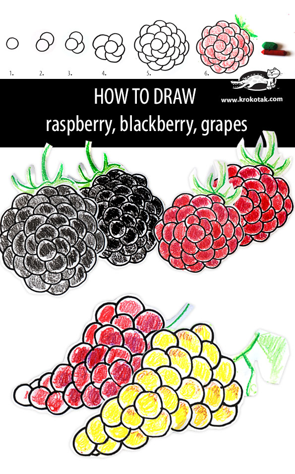 graphic free download Krokotak how to draw. Blackberry drawing raspberry