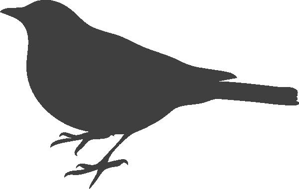 png transparent download Collection of free mockingbird. Blackbird drawing cartoon