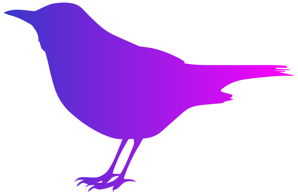 svg transparent Common silhouette free commercial. Blackbird drawing clipart