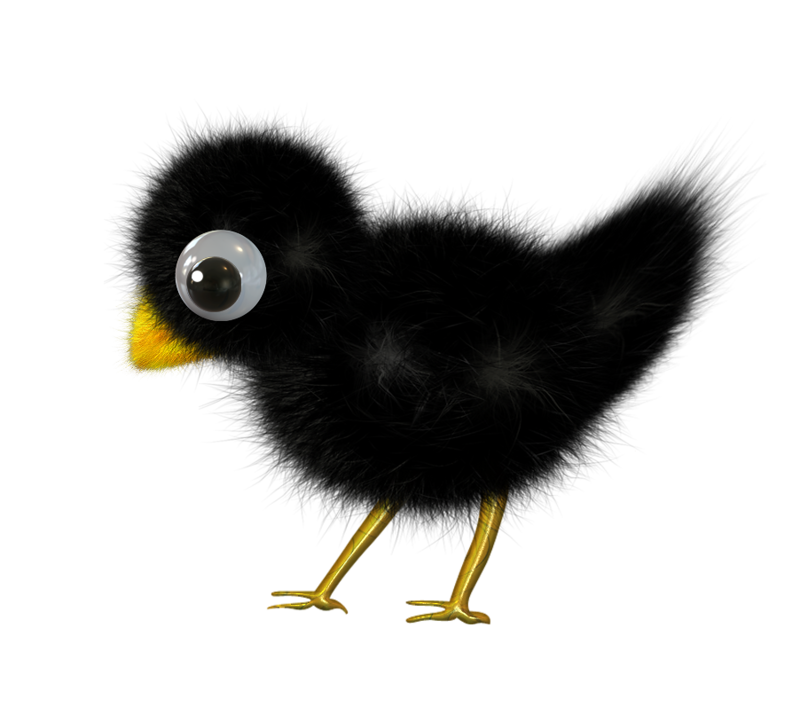 picture free stock Blackbird drawing cute.  aledremov clipart pinterest