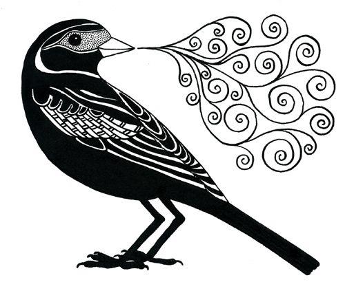 vector freeuse Birds bird art drawings. Blackbird drawing ink