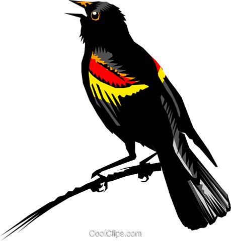 png royalty free stock Encode clipart to base. Blackbird drawing red winged
