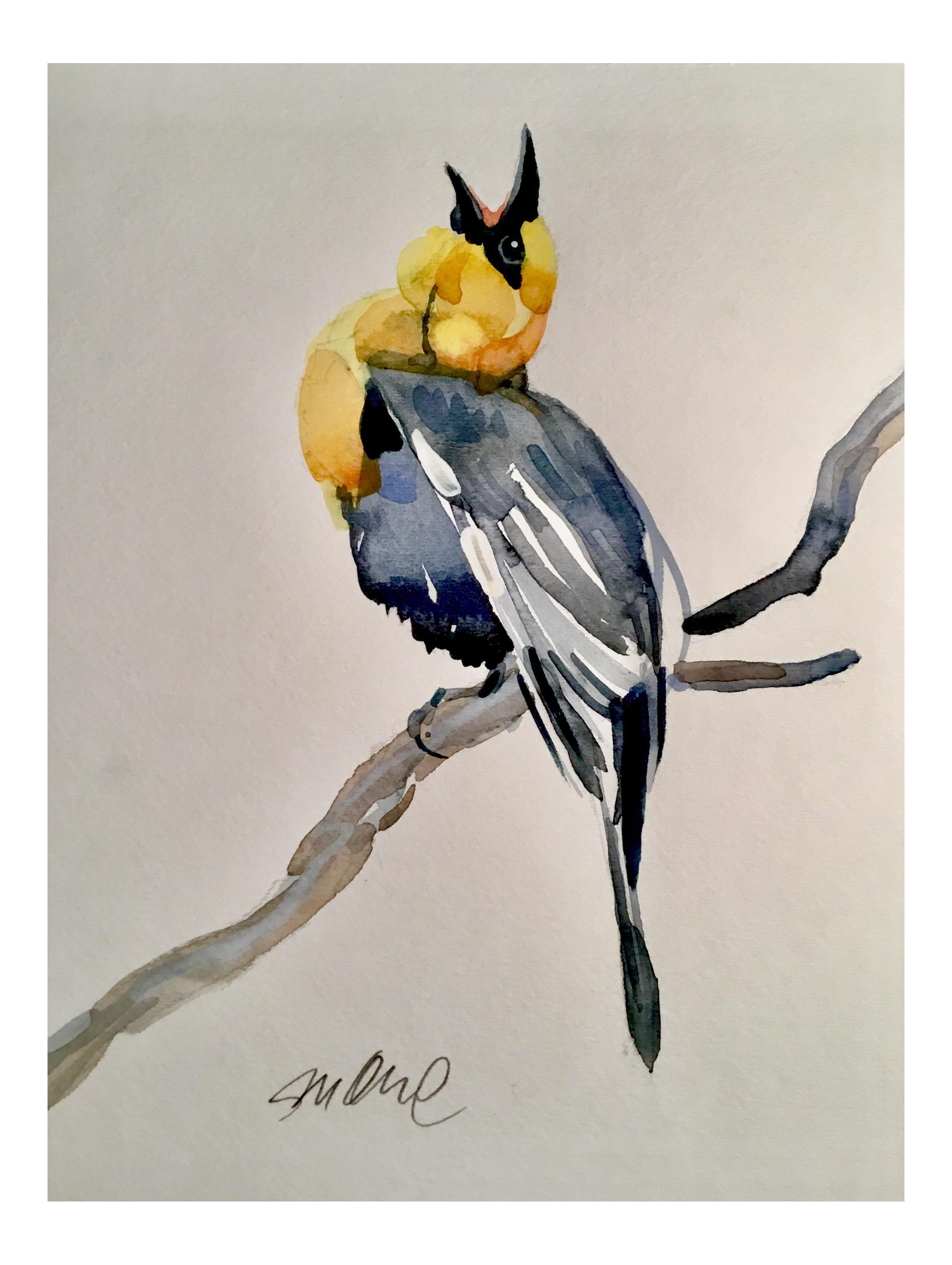 clipart freeuse library Blackbird drawing watercolor. Yellow headed original painting