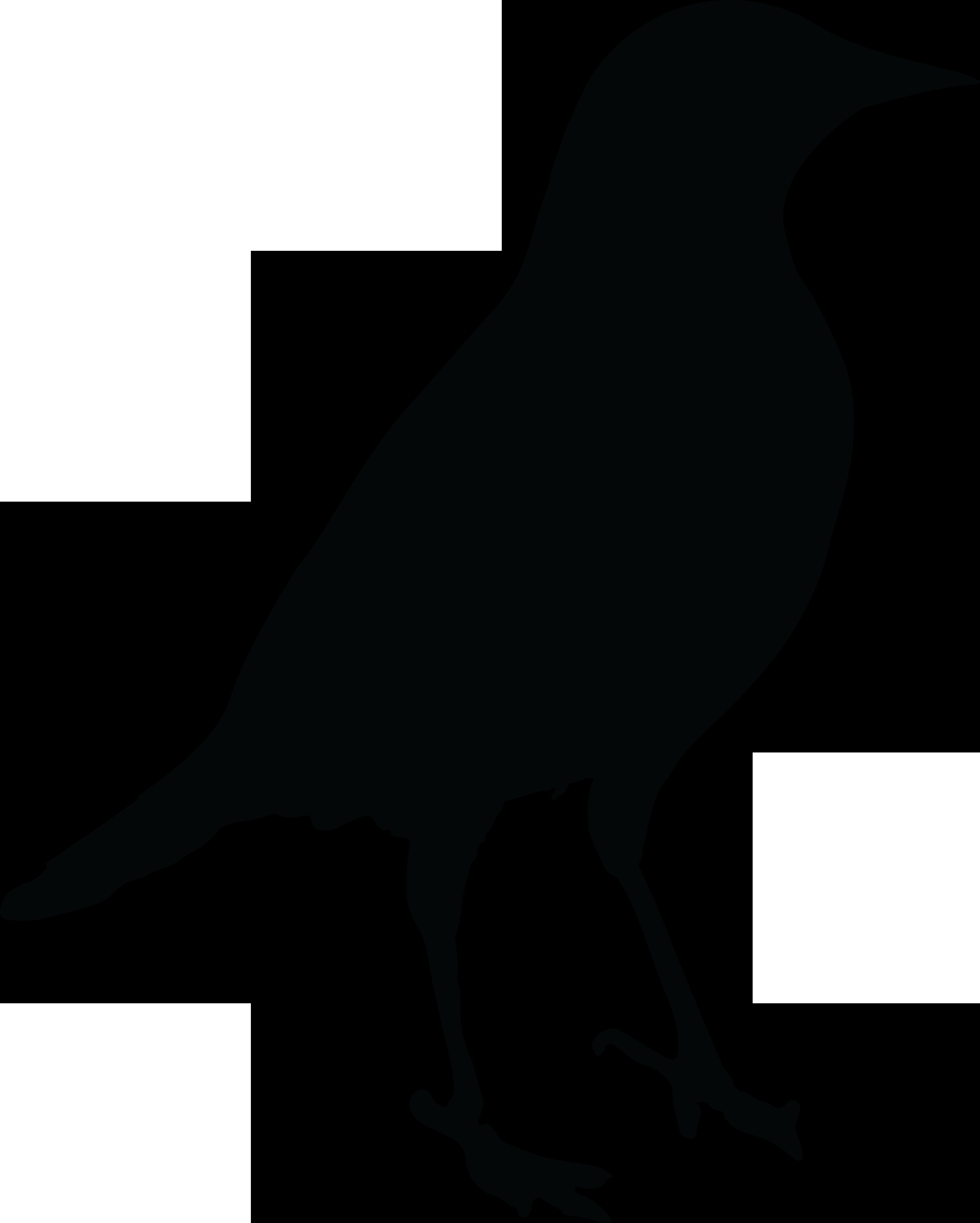 clip art royalty free stock Blackbird drawing wildlife. Common clip art bird