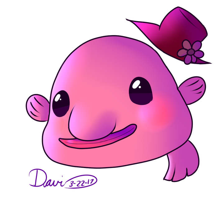 vector black and white stock Blobfish drawing animation. Drawings more wattpad cute