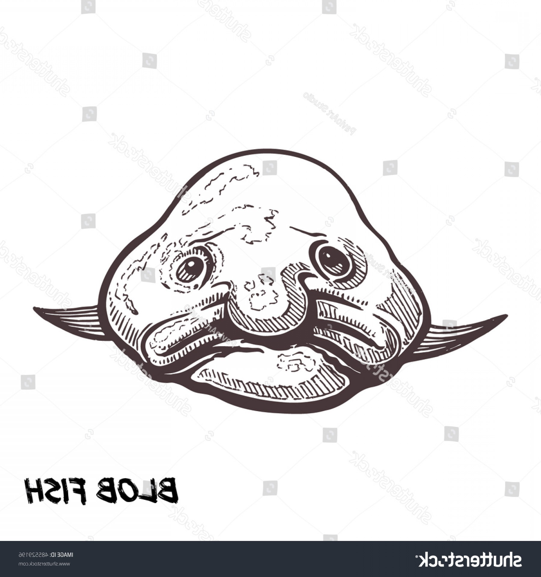 clip art freeuse Deep sea fish sketch. Blobfish drawing side view