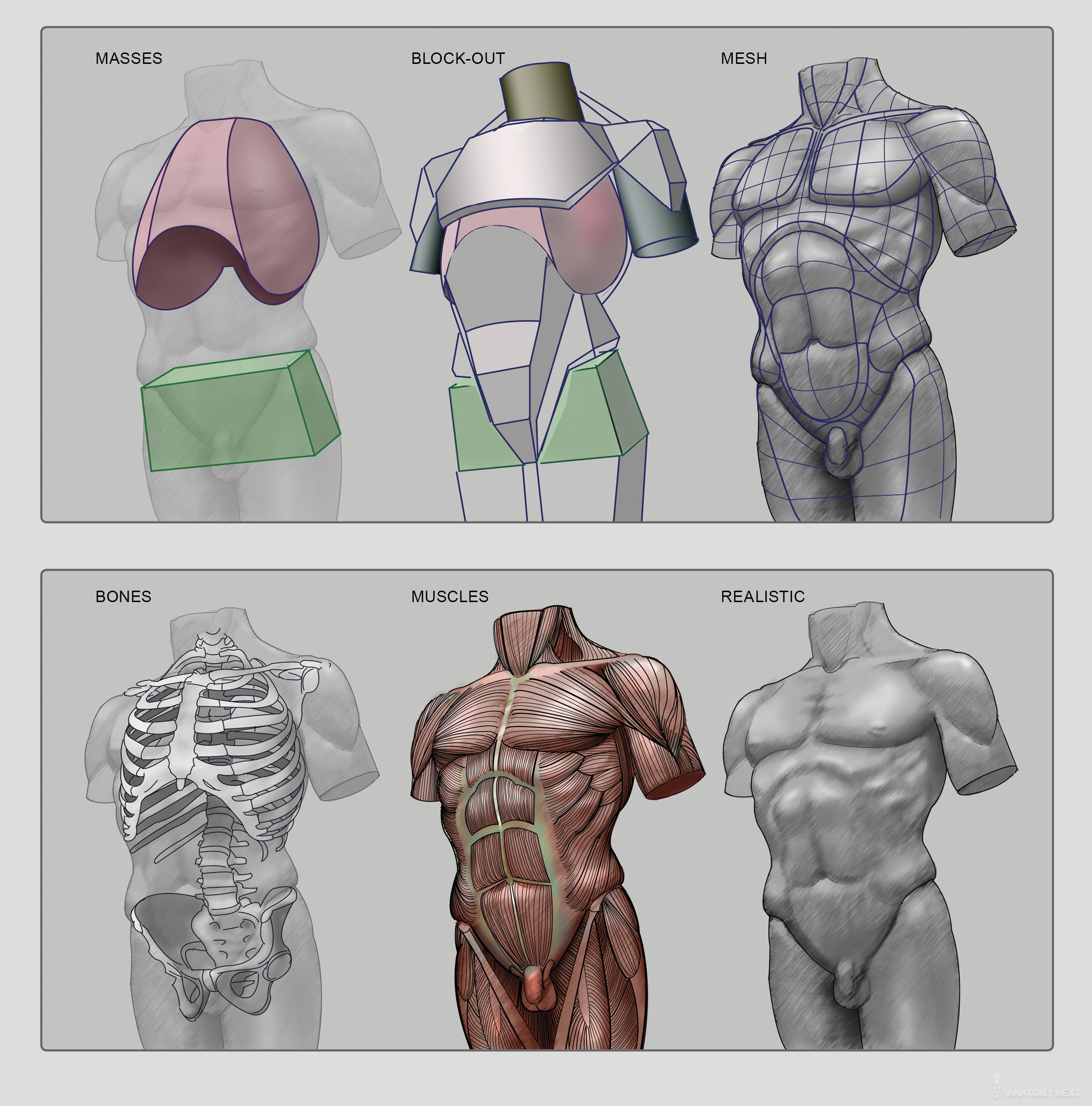 clipart transparent library Block drawing human anatomy. Next of figure outs