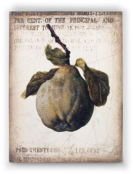 clipart freeuse stock Block drawing still life. Sid dickens ancient pear