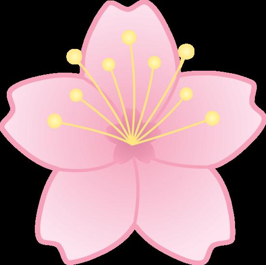 jpg free stock Blossom clipart. Drawn sakura clip art.