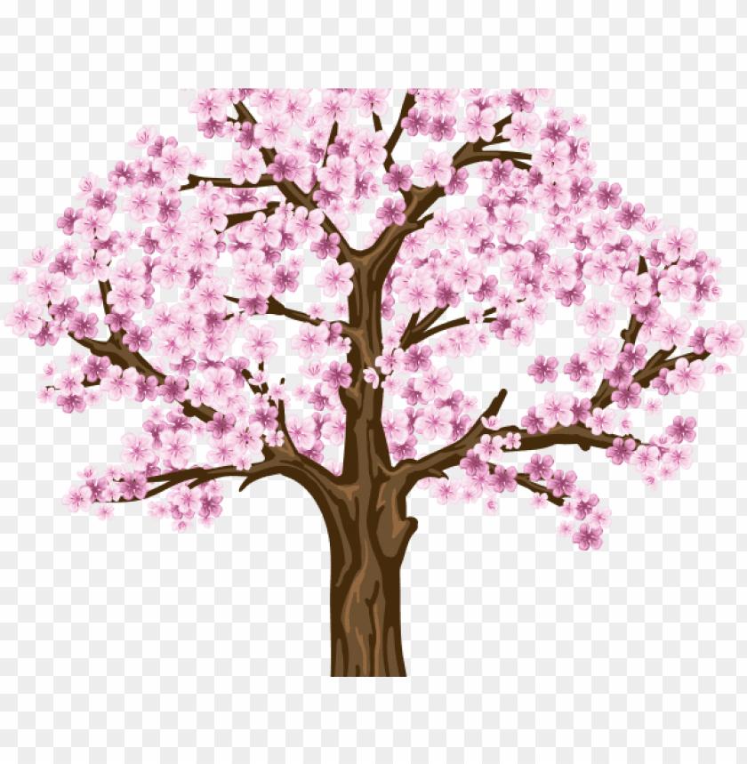 clipart transparent Sakura cherry png hd. Blossom clipart dogwood tree.