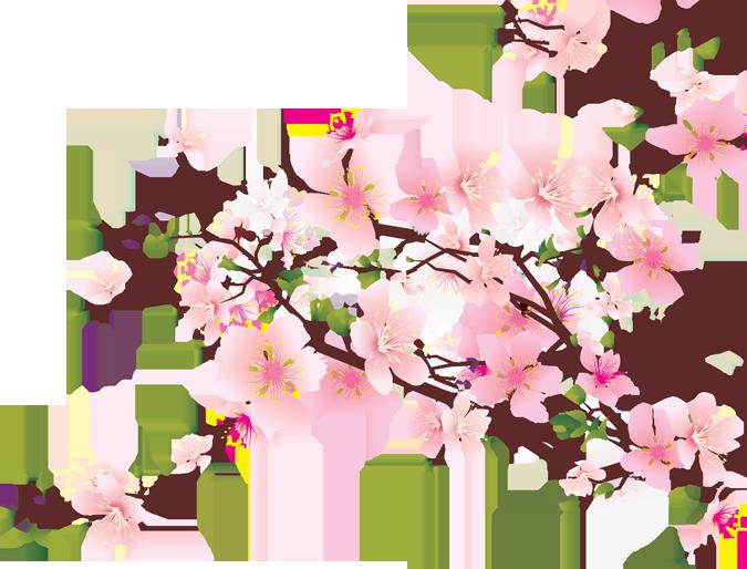 svg library oriental cherry blossom clip art