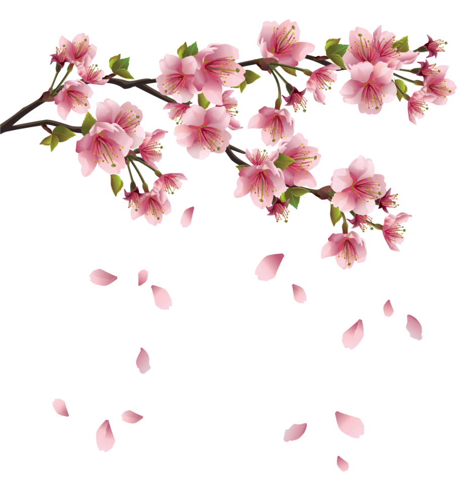 clipart freeuse Beautiful Pink Spring Branch with Falling Petals PNG Clipart