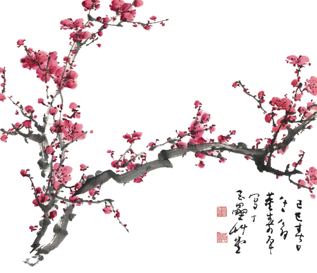 vector freeuse Blossom clipart plum flower. Free background removal by.