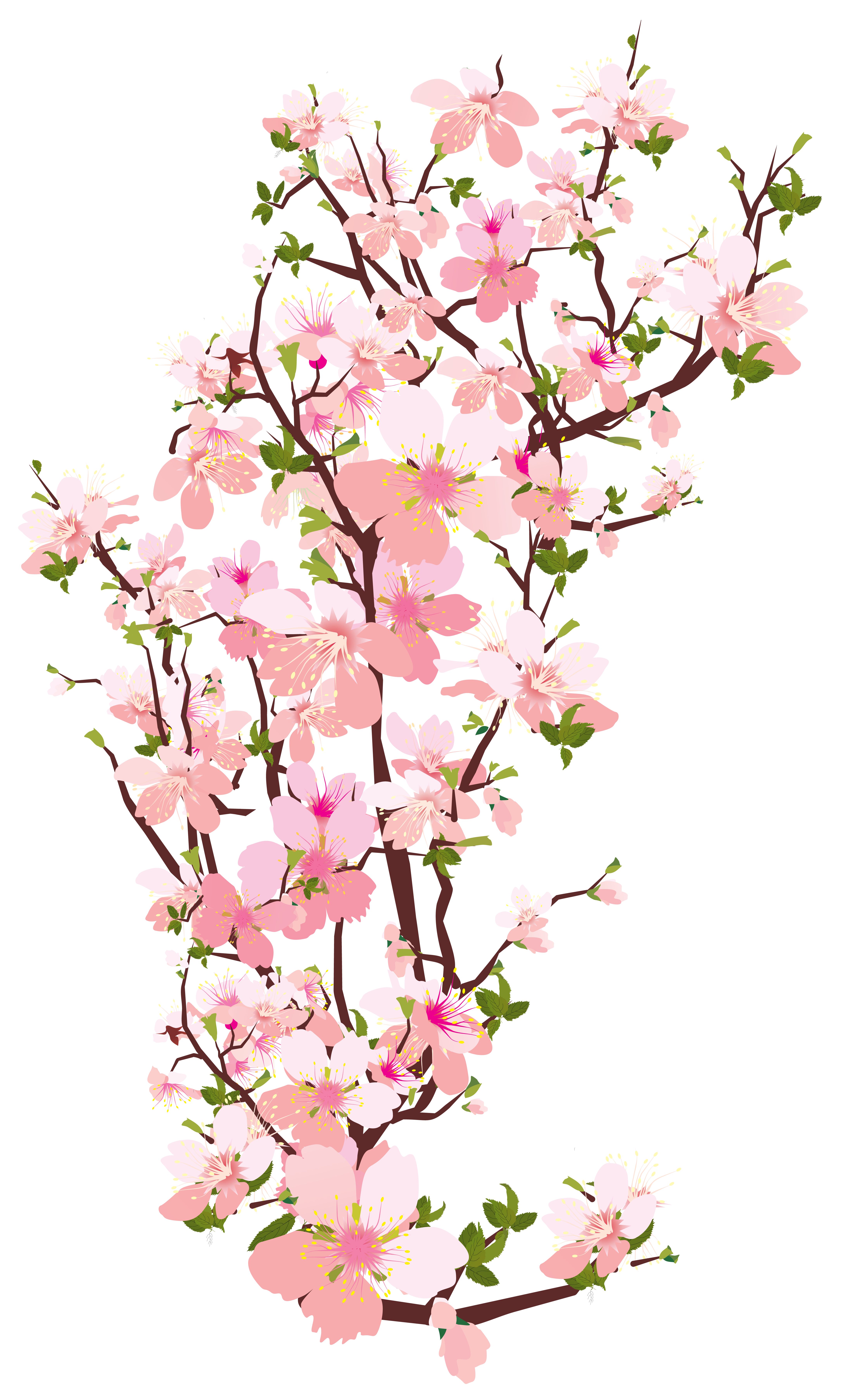 vector royalty free download Spring Tree Branch Transparent PNG Clip Art Image