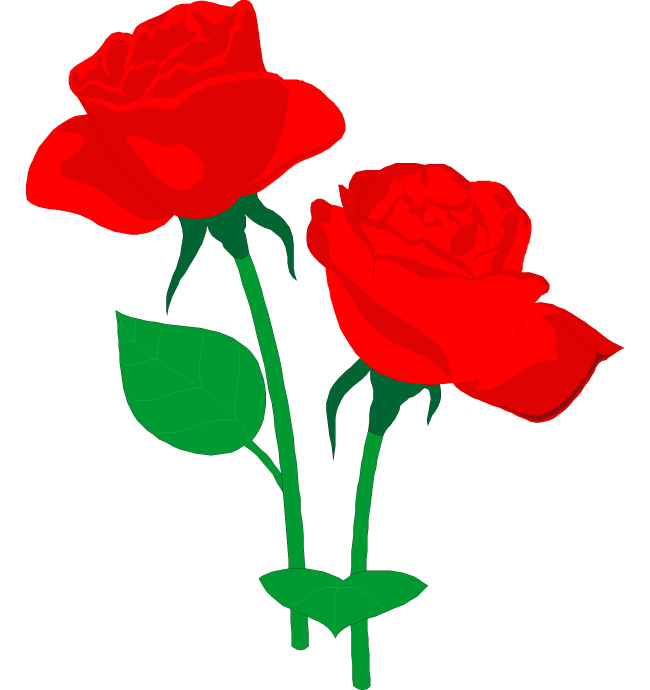 png freeuse download Free red roses download. Blossom clipart rose.
