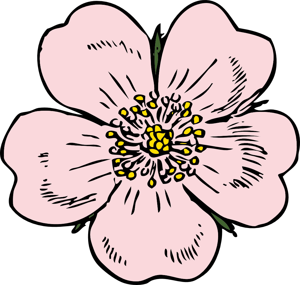 picture Wild clip art would. Blossom clipart rose.