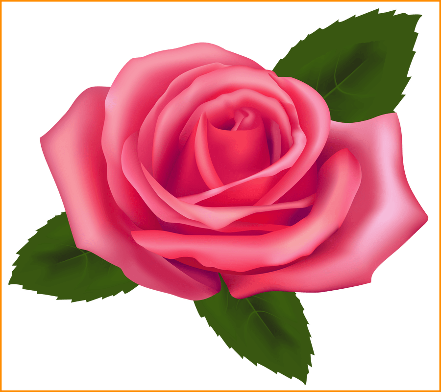 svg royalty free library Marvelous pink png best. Blossom clipart rose.