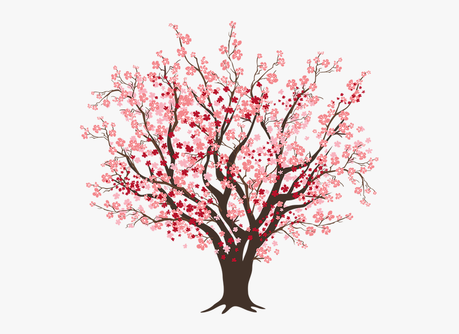 graphic royalty free library Blossom clipart tree. Cherry free cliparts on
