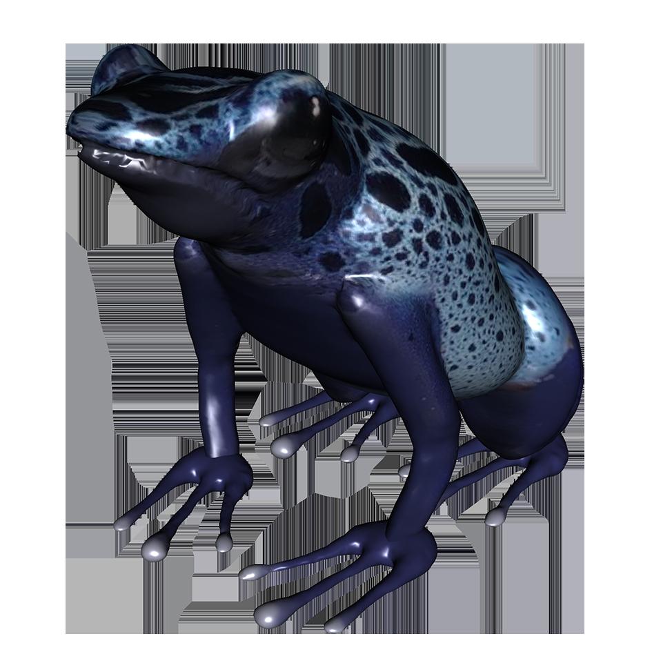 clip free stock Blue clipart poison dart frog. Clip art underside of.