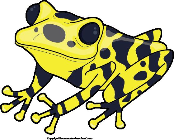svg transparent Colorful free on. Blue clipart poison dart frog.