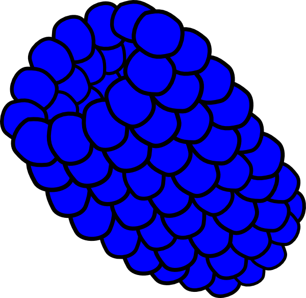 png library stock Blue Raspberry Clip Art at Clker