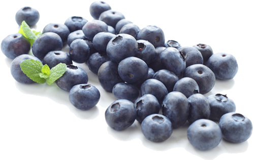 clip black and white stock Blueberry png images transparent. Berry clipart juniper berry.
