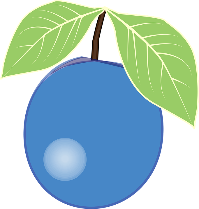 picture transparent stock Blueberry clipart blue berry. Berries free on dumielauxepices.