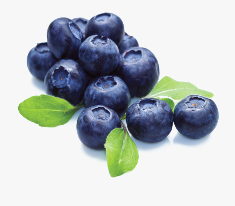 vector black and white Transparent fruit blueberry. Blueberries blue berries with