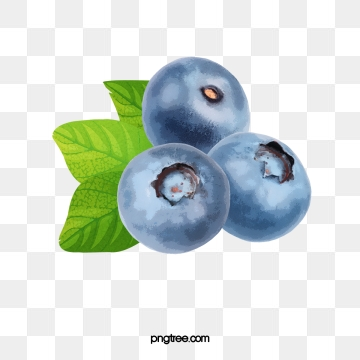 clip transparent library Blueberry vector. Png psd and clipart