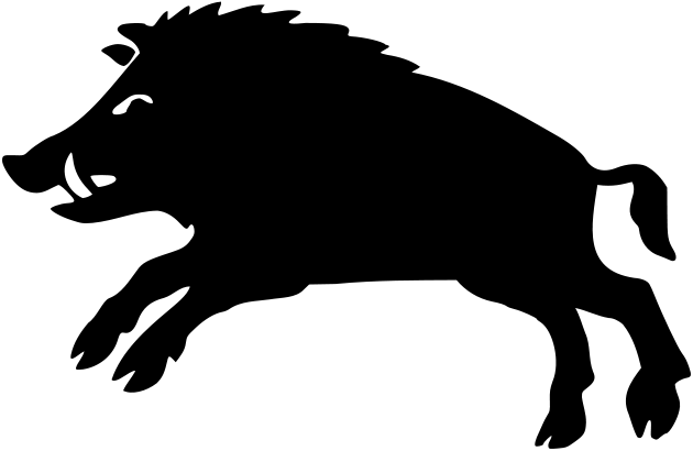 graphic library Boar vector. Pin by nikolas eristavi