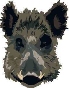 svg Boars Head Clip Art at Clker