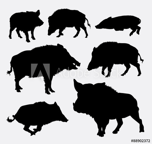 clipart freeuse library Boar vector silhouette. Wild buy this stock