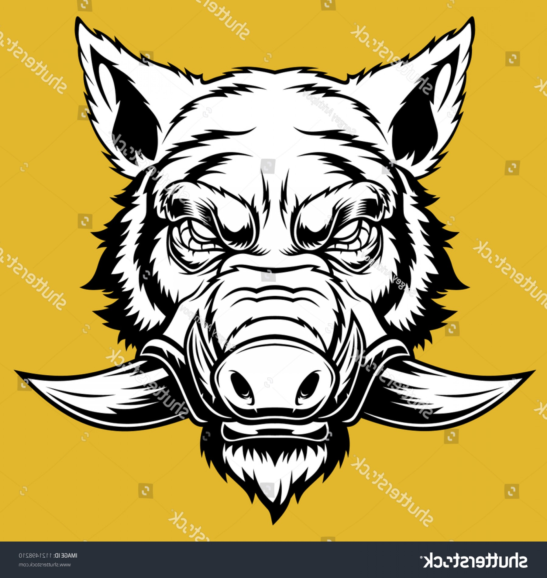 banner library download Wild drawing free download. Boar vector skull
